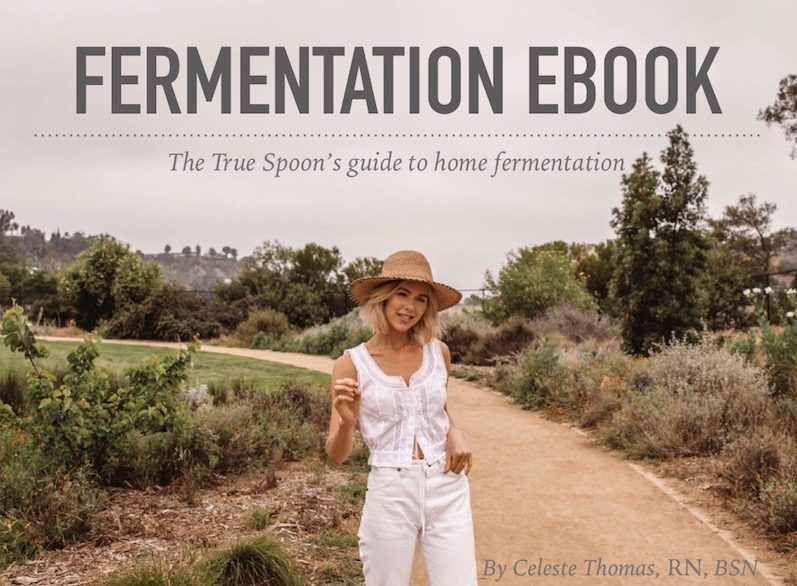 fermentation-ebook