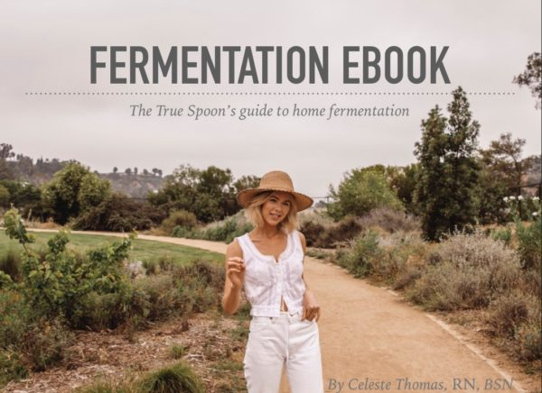Fermentation EBook